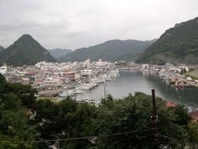 下田公園から下田漁港と市街を望む