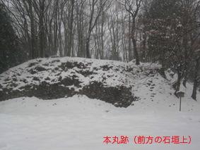 本丸跡(前方の石垣上)